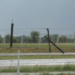 there were tons of these poles along the highway